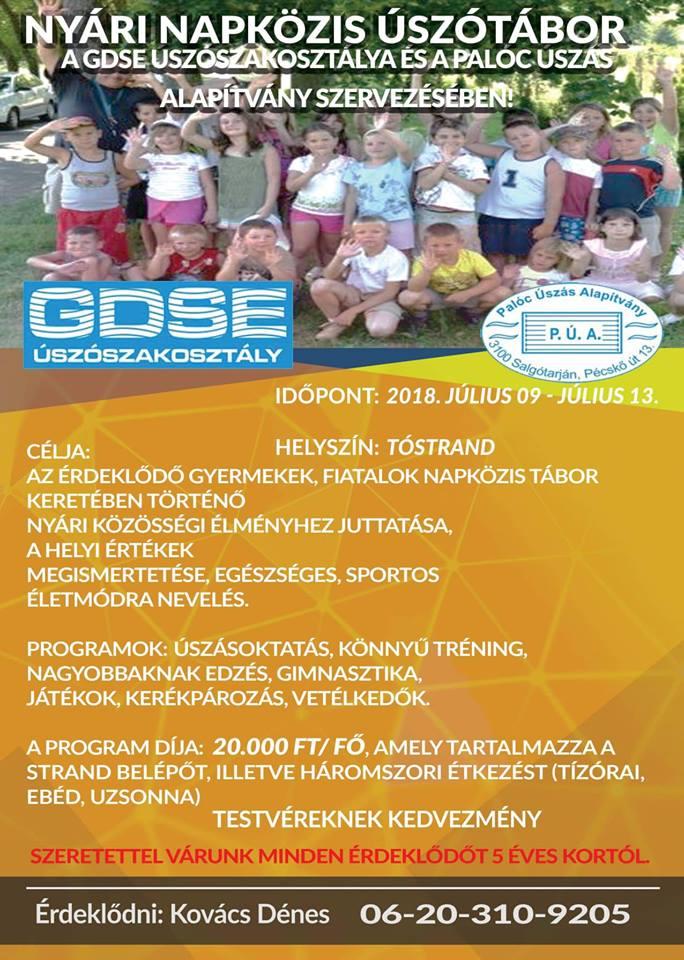 GDSE 2018